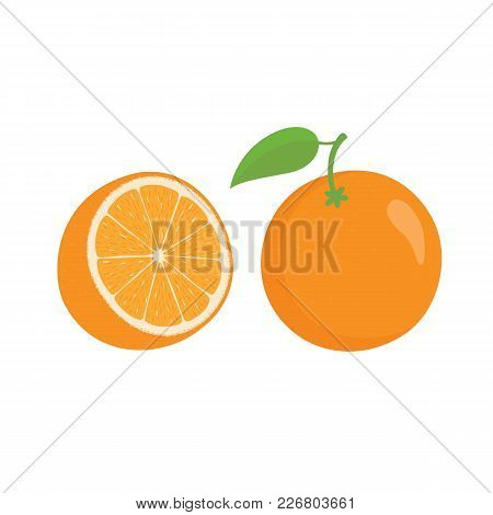 Oranges Orange Slice, Half Cut Orange And Front View Of Cut Ripe Orange. Vector Illustration In Flat