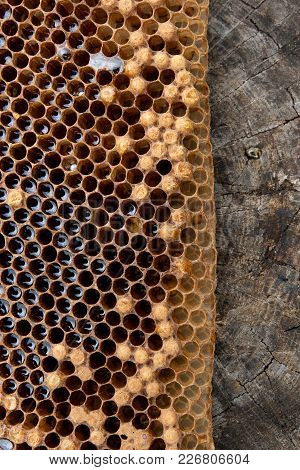 Close Up View Of Honeycomb With Honey On Vintage Background..