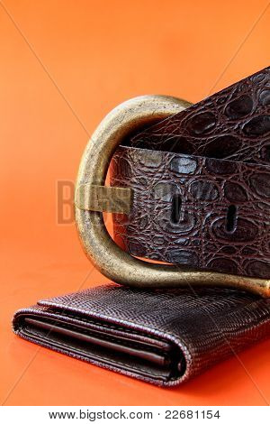 female decorative brown belt on an orange background