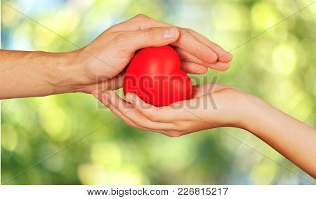 Red Hands Heart Background Close-up Gift Celebration