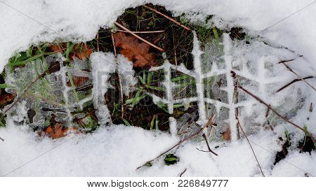 Footprint Of A Boot In Thin Snow, Leaves And Grass Showing Through The Tread Pattern.