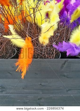 Easter Decoration. Birch Branches Decorated With Colorful Feathers.
