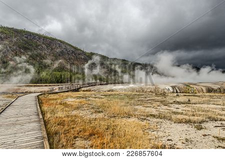 Steam, Trees, Colors, And Barren Spots.  This Is Yellowstone National Park.