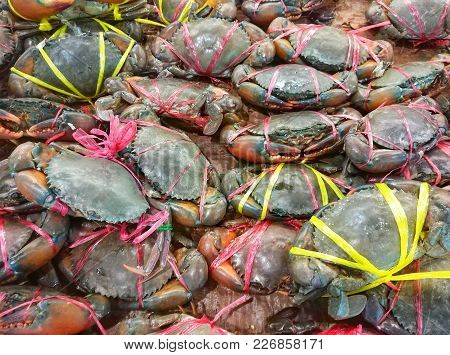 Live Crabs Sold In Seafood Markets. Bangkok, Thailand.