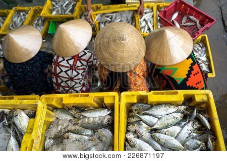 Caught Fishes Sorting To Baskets By Vietnamese Women Workers In Tac Cau Fishing Port, Me Kong Delta