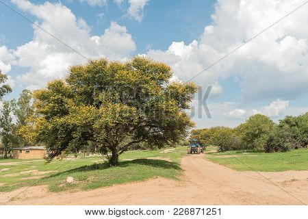 Excelsior, South Africa, February 10, 2018: A Farm Scene With Tractor At The Koranna Mountain Near E