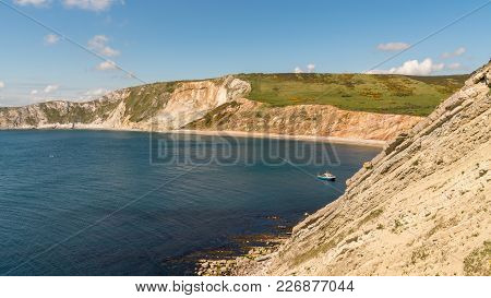 Looking Towards Worbarrow Bay, Near Tyneham, Jurassic Coast, Dorset, Uk