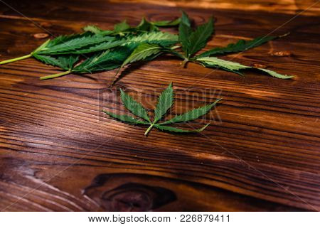 Leaves Of The Cannabis Plant On Rustic Wooden Table