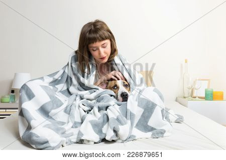 Taking Care Of Dog In Warm Blanket In Bed. Young Woman Petting Her Lazy Staffordshire Terrier Dog In