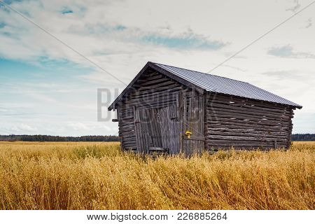 The Wooden Barn House Stands In The Middle Of The Autumn Fields In The Northern Finland. The Fields