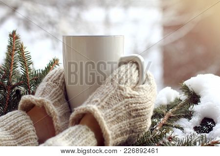 Hands In Mittens Are Holding White Mug Against The Background Of Snow-covered Green Tree / Warming D
