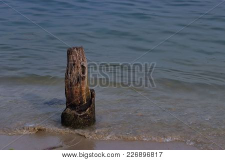 A Wood Pile Which Is The Remains Of Chinese Nets Now Used To Tie Small Boats