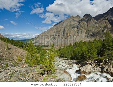 Beautifull Valley With View To Mountains And   River, Trees In Altaj, Russia  At The Summer
