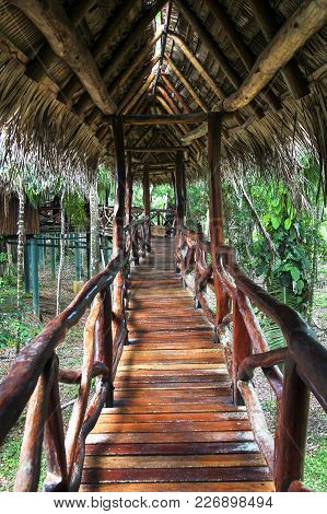 An Elaborate Wood Railing On An Elevated Wood Walkway As Part Of A Remote Jungle Resort In Southern