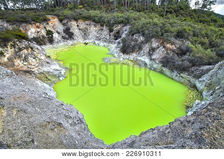 A Bright Green Pool Called Devil's Bath, Colored By Volcanic Minerals At The Wai-o-tapu Thermal Wond