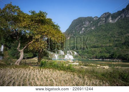 Cultivated Farmland In Dry Season In Cao Bang Province With Ban Gioc Waterfall In North Of Vietnam.