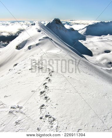 Footsteps Lead Along The Narrow Summit Ridge Of Mt. Ruapehu In New Zealand.