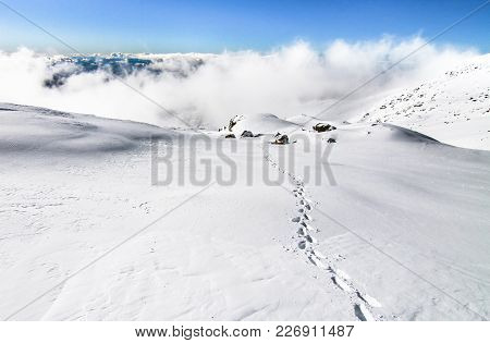 Footsteps Lead Along A Snowfield To The Summit Of Mt. Ruapehu In New Zealand.