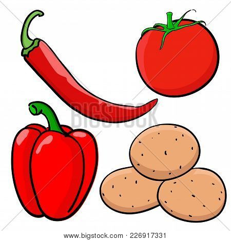Vegetable Colored Doodle. Hand Drawn Sketch. Vector Illustration Isolated On White Background