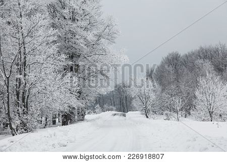 Mountain Road Through The Woods Covered With Snow