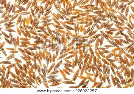 Cumin/jeera Grains,  Cumin/jeera Seeds,a Top View Closeup Photo On A Group Of Cumin/jeera Grain Isol
