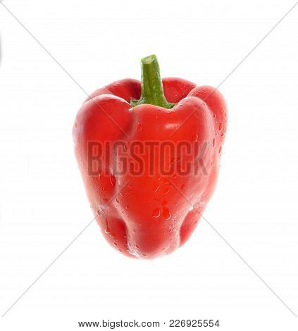 Isolate Red Capsicum/bell Pepper, Fresh Capsicum/bell Pepper, A Close Up Photo Image Of Fresh Organi