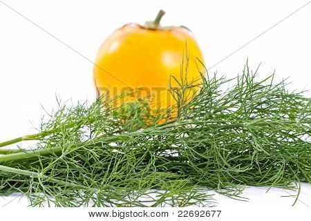 Dill and yellow tomato.