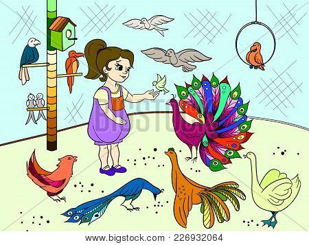 Childrens Cartoon Color The Contact Birds Zoo. Bird Picture Book. Ornithology For The Girl. Vector I