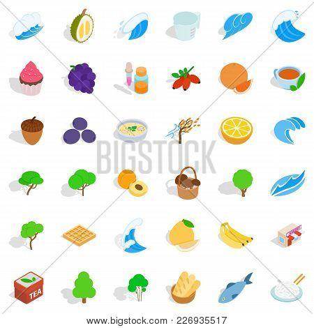 Lifelike Icons Set. Isometric Set Of 36 Lifelike Vector Icons For Web Isolated On White Background
