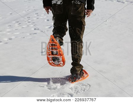 Man Walks With Modern Orange Snowshoes And Corduroy Pants On White Fresh Snow In Mountains