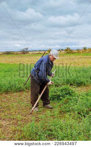 Farmer In Old Clothes Mows Grass In The Field Farmer Mows The Grass