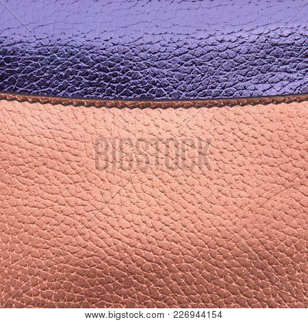 Piece Of Colored Leather Close-up. Fragment Of Colored Grainy Skin Closeup.