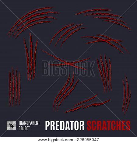 Animal Red Scratches On Dark Background. Claw Scratch Mark. Paper Claws Animal Scratching. Animal Pr