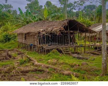The Jungle, Indonesia - January 21, 2015: Houses On The Trees. That Way Korowaya Tribe Builds Houses