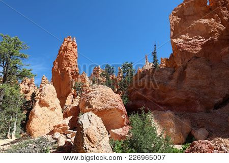 Rock Hoodoos In Bryce Canyon National Park In Utah. Usa