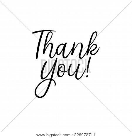 Thank You Handwritten Inscription. Hand Drawn Lettering. Greeting Card. Thank You Calligraphy. Thank