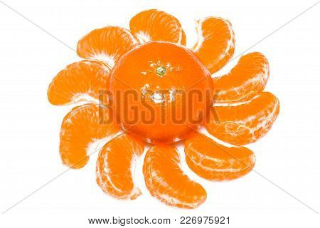 Isolated Citrus Segments. Collection Of Tangerine, Orange And Other Citrus Fruits Peeled Segments Is