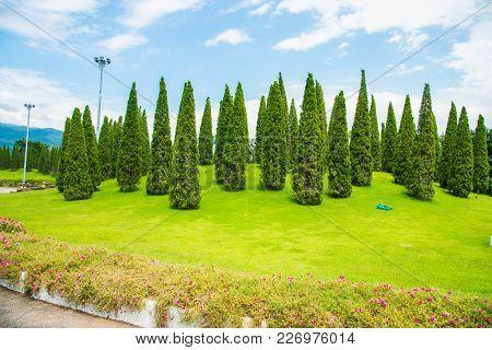Image Of A Beautiful Garden In Chiang Mai. Thailand