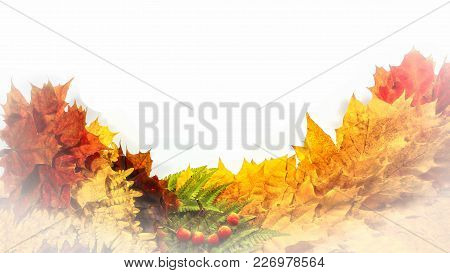 Autumn Background, Elements Of Maple Leaves, Collected In A Single Row, Seasonal Changes