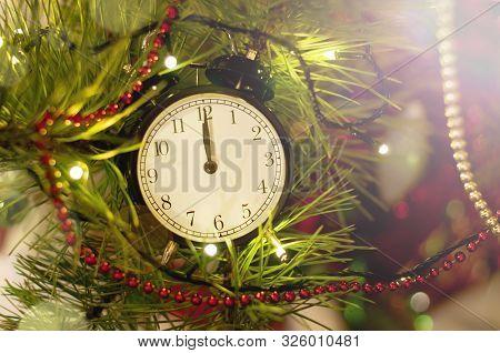 New Year Alarm Clock Lying On Christmas Tree Branches. Midnight. Festive Chritmas Background