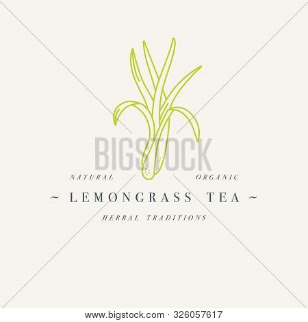 Vector Design Colorful Templat Logo Or Emblem - Organic Herb Lemongrass Tea. Logos In Trendy Linear