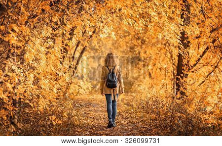 Woman In Autumn Park, Back View. Adult Girl Walking Away Alone On Path In Autumn Forest. Lonely Youn