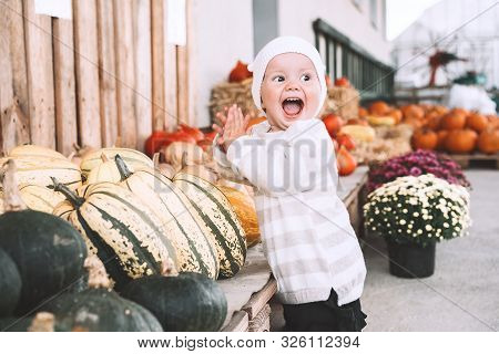 Child Picking Pumpkins At Pumpkin Patch.