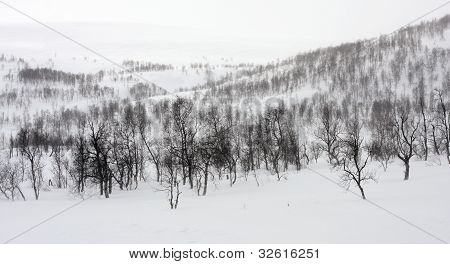 Snowdrift over the ridge.