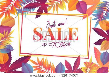 Autumn Sale Poster Or Banner With Bright Autumn Leaves, Fall Season Promotion Design. Vector Frame B