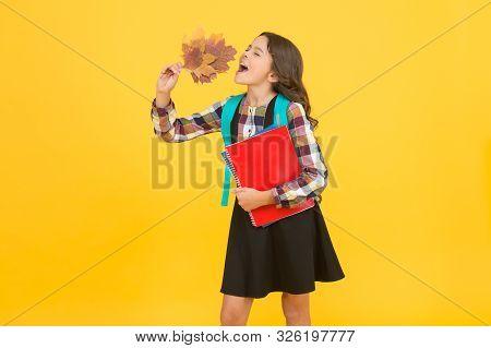 Autumn Time For Studying. Beginning Of Autumn Semester. School Education Concept. Girl Enjoying Autu