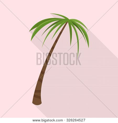 Vector Design Of Palm And Tall Sign. Collection Of Palm And Coco Vector Icon For Stock.