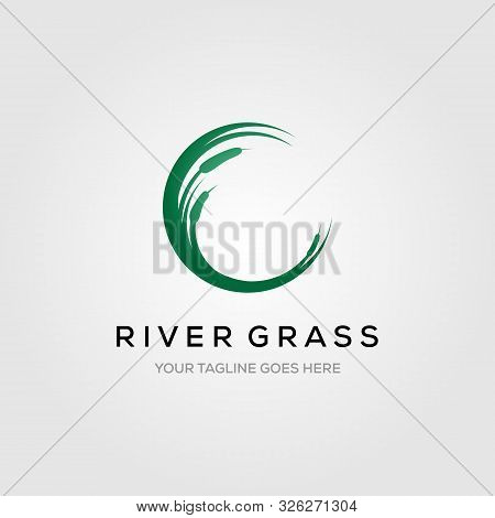 River Grass Green Reed Cattails Letter C Initial Logo Vector Illustration Design