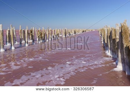 The Surface Of The Pink Lake Sasyk Sivash In The Western Part Of The Crimean Peninsula, Yevpatoria.