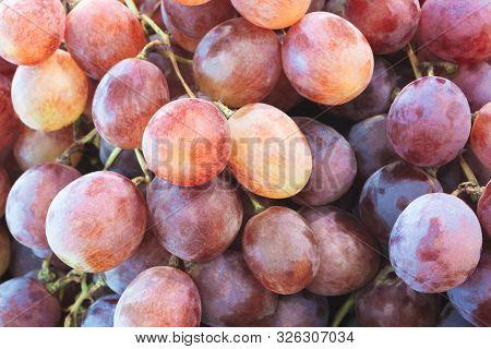Healthy Fruits Red Wine Grapes Background/ Dark Grapes/ Blue Grapes/wine Grapes,red Wine Grapes Back